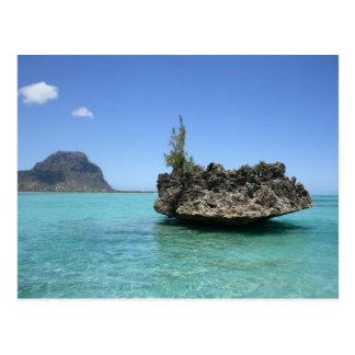 Carte Postale Roche en cristal composée de corail