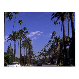 Carte Postale Rodeo Drive résidentiel, Beverly Hills, la