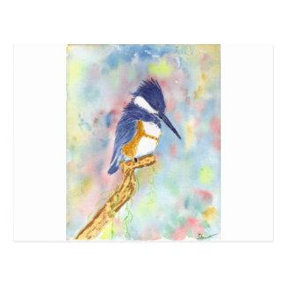 Carte Postale Roi de Fisher, aquarelle de martin-pêcheur