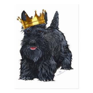 Carte Postale Roi de Terrier d'écossais