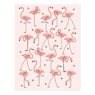 Carte postale rose de flamants