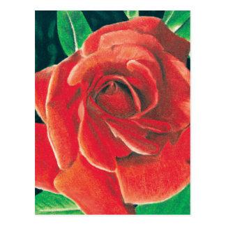 Carte postale rose par Jacob Grimm