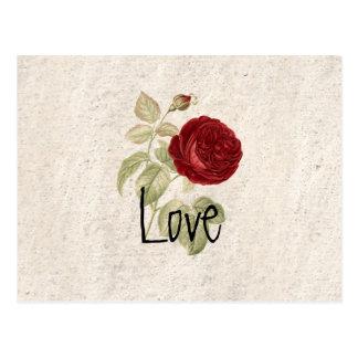 Carte Postale Rose rouge Girly romantique chic vintage