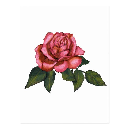 Carte postale rose simple de rose dessin au crayon de couleur - Dessins de rose ...