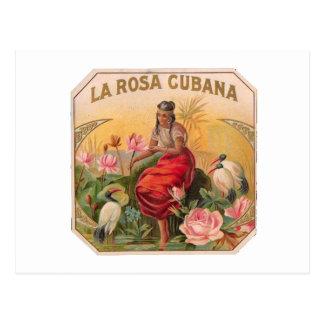 Carte Postale Rosée cubana Diseño Vintage Cuba