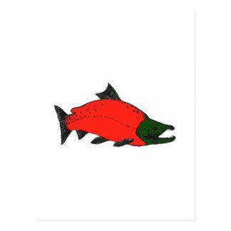 Carte Postale Rouge - art de saumon de saumon rouge