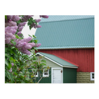 Carte postale rouge de lilas de grange du Michigan
