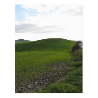 Carte Postale Route de campagne au-dessus de rouler les collines