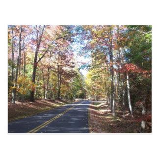 Carte Postale Route de campagne d'automne