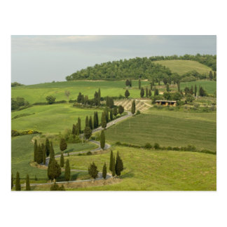 Carte Postale Route de Pienza à Montepulciano,