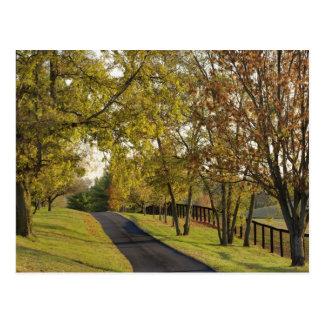 Carte Postale Route rurale par la région de Bluegrass du