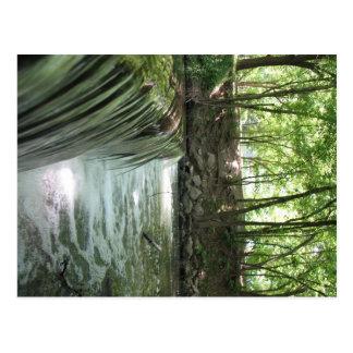 Carte Postale Ruisseau de bavardage
