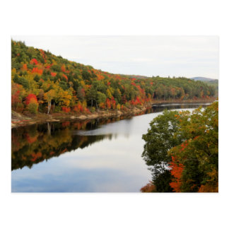 Carte Postale Ruisseau de loutre en automne