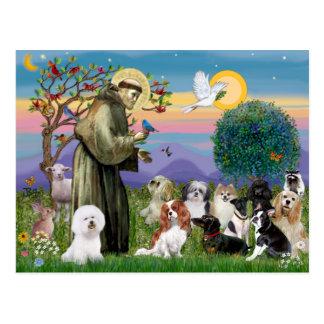 Carte Postale Saint Francis avec 10 chiens