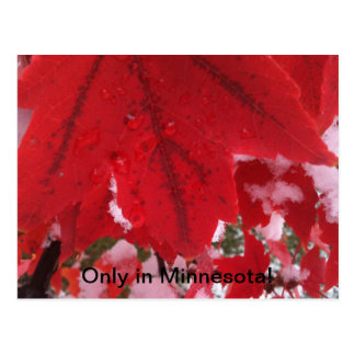 Carte Postale Salutation du Minnesota