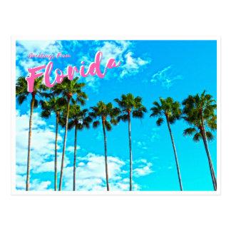 Carte Postale Salutations de la Floride
