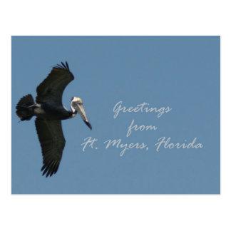 Carte Postale Salutations de pélican de Fort Myers