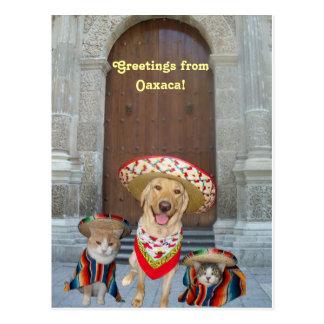 Carte Postale Salutations d'Oaxaca