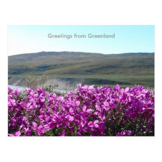 Carte Postale Salutations du Groenland 10