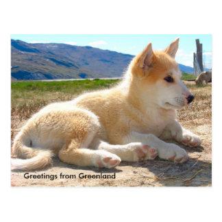 Carte Postale Salutations du Groenland 12