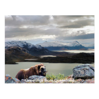 Carte Postale Salutations du Groenland 13