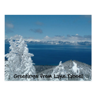 Carte Postale Salutations du lac Tahoe !