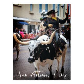 Carte Postale San Antonio Longhorn