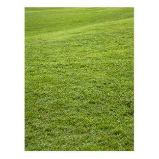 Carte Postale San Juan, Porto Rico - l'herbe verte est