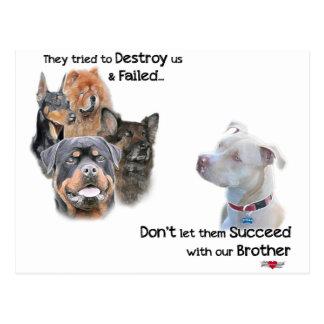 Carte Postale Sauvez le Pitbull