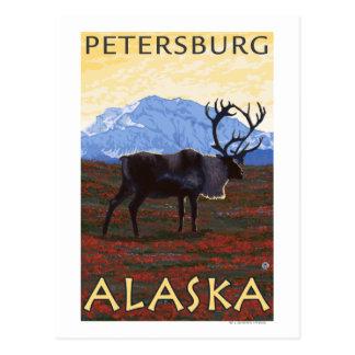 Carte Postale Scène de caribou - Pétersbourg, Alaska