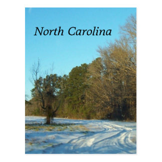 Carte Postale Scène de neige d'hiver de la Caroline du Nord