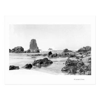 Carte Postale Scène de plage à la plage de canon, photographie