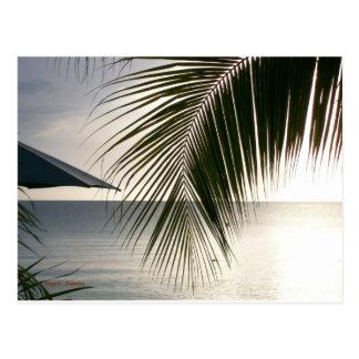 Carte Postale Scène de plage de Negril