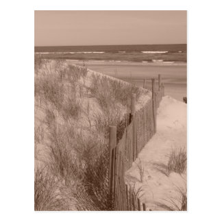 Carte Postale Scène de plage de sépia