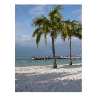 Carte Postale Scène principale de plage de Largo la Floride