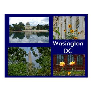 Carte Postale Scènes de Washington DC