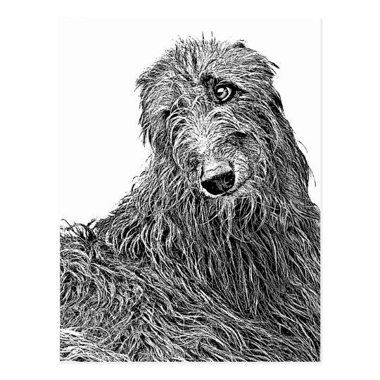 Carte Postale Scottish deerhound Noir et Blanc