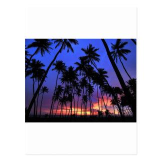 Carte Postale Sensation Relaxed de la Floride de conception