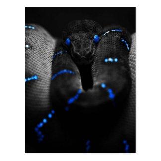 Carte Postale serpent noir