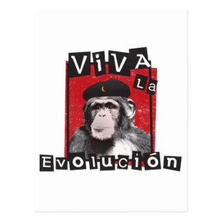 Carte Postale Singe d'Evolucion de La de vivats
