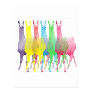 Carte Postale six lamas dans six couleurs de lama
