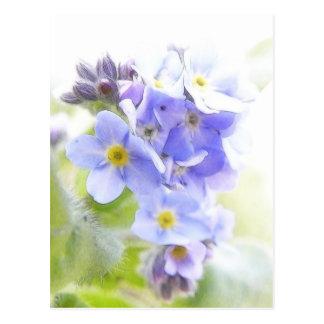 Carte Postale Soleil sur les myosotis des marais bleus