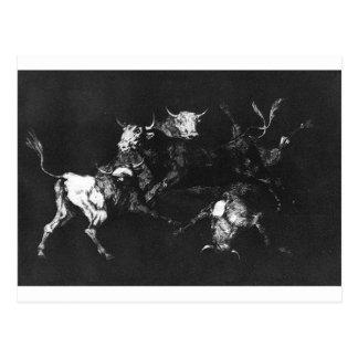 Carte Postale Sottise des imbéciles par Francisco Goya