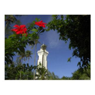 Carte Postale South Pacific, Polynésie française, Tahiti. Ketmie