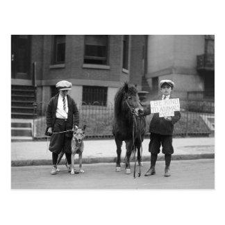 Carte Postale Soyez aimable avec des animaux Week, 1923