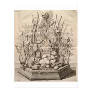 Carte Postale Squelettes déplaisants vintages, crânes et arbres