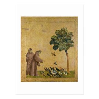 Carte Postale St Francis d'Assisi prêchant aux oiseaux