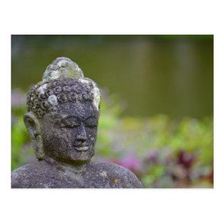 Carte Postale Statue de Bouddha