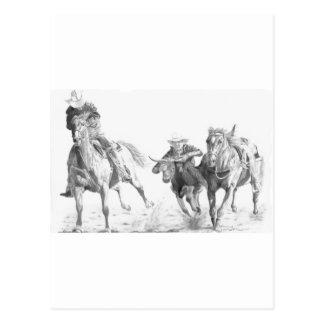 Carte Postale Steerwrestler