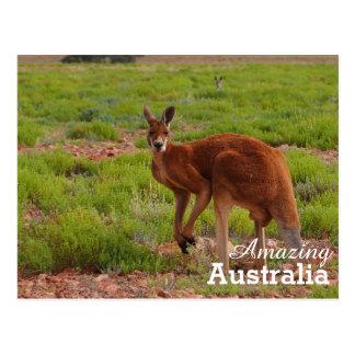 Carte postale stupéfiante de l'Australie